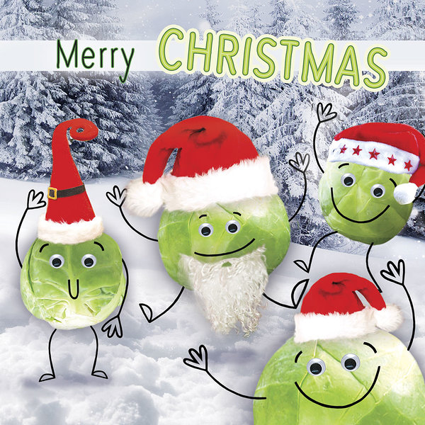Sprouts in Christmas Hats-0